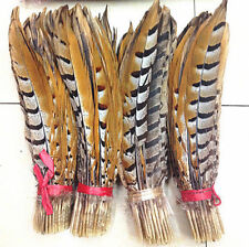 rare 10-100pcs Scarce natural pheasant feather 30-35cm/12-14inch