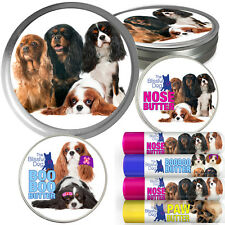 CAVALIER KING CHARLES SPANIEL 4 NEW COMBOS WITH ALL COLOR VARIETIES LABEL