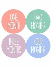 Months in Motion Girl Baby Month Stickers Monthly Sticker Milestone Months 1044