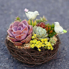 Handmade Vine Brown Bird Nest House Home Nature Craft Holiday Decoration fU