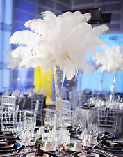 Wholesale 10-100pcs Quality natural white ostrich feathers 6-28 inch / 15-70 cm