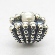 Authentic Genuine S925 Sterling Silver Shell with Pearl Charm Bead