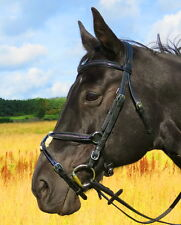 FSS GLITTER BLING Curve Mexican GRACKLE FIGURE 8 Comfort Padded PATENT Bridle