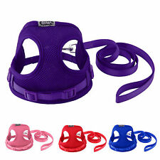 Tiny Dog Harness Lead Set Teacup Mini Puppy CHIHUAHUA  Pabbit Cat Toy