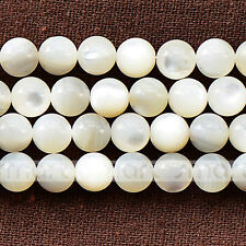 """White Natural Shell Round Loose Beads 15.5"""" Inches Strand 4 6 8mm"""