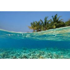 Photography Wall Art Canvas Print Ready To hang Underwater Coral Island