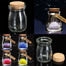 US 2/5/10Pcs 100ML Small Clear Glass Bottle Wish Vial Container + Cork Stopper
