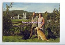er0027 - The Queen & Duke of Edinburgh at Balmoral  with Labradors - postcard