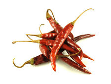Chile De Arbol Pepper - Grows 3'-4' tall!! - Hot and smokey flavor! Free Ship!!