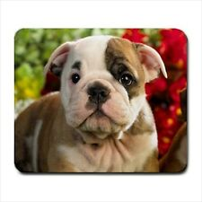 Bulldog Puppies / Dog - Mousepads or Coasters (8 Styles) -BB4201