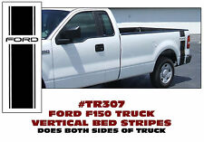 TR307 FORD TRUCK F-150 - BED STRIPE with PINSTRIPES - FORD NAME - DECAL
