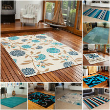 Teal Blue Small Large XL Rug Cheap Thick Soft Online Rugs New Modern Carpet Mats