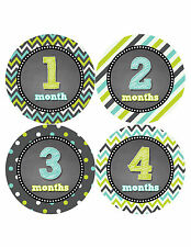 Baby Boy Monthly Milestone Birthday Stickers 12 Month Sticker Photo Prop #425
