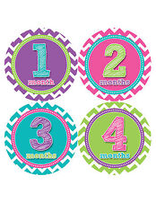 Baby Girl Monthly Baby Stickers 12 Month Milestone Birthday Sticker Photo #284