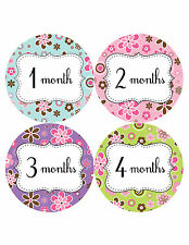 Baby Girl Monthly Photo Shirt Stickers 12 Month Milestone Sticker Newborn #210