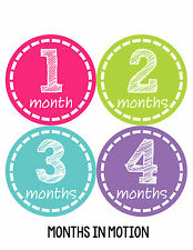 Baby Girl Monthly Photo Shirt Stickers 12 Month Milestone Sticker Newborn #148