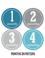 Baby Boy Monthly Milestone Birthday Stickers 12 Month Photo Shirt Sticker #163