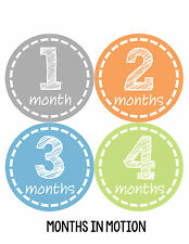 Baby Boy Monthly Milestone Birthday Stickers 12 Month Photo Shirt Sticker #114