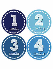 Baby Boy Monthly Milestone Birthday Stickers 12 Month Photo Shirt Sticker #081