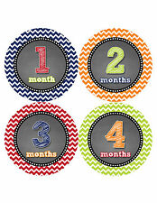 Baby Boy Monthly Milestone Birthday Stickers 12 Month Photo Shirt Sticker #420