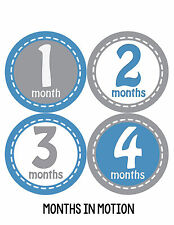 Baby Boy Monthly Milestone Birthday Stickers 12 Month Photo Shirt Sticker #230