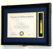 Graduation Diploma and Tassel Frame Display Case 11 x 8.5 w/Custom Matting