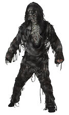 California Costumes Toys Rotten to The Core (Child Costume) Halloween 00336