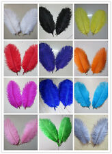 Wholesale 10-1000 pcs high quality natural ostrich feather 6-8 inches / 15-20 cm