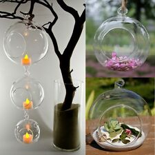Hanging Glass Flower Plant Vase Candle Tealight Holder Terrarium Wedding Decor