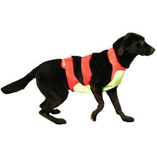 Canine Field Vest