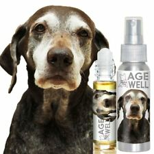 GERMAN SHORTHAIR POINTER AGE WELL DOG AROMATHERAPY FOR SENIOR DOG SUPPORT