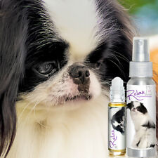 JAPANESE CHIN RELAX DOG AROMATHERAPY FOR THUNDER, FIREWORKS FEAR, STRESS ANXIETY