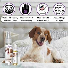 BRITTANY SPANIEL RELAX THE BLISSFUL DOG AROMATHERAPY ANXIETY STRESS TRAVEL FEAR