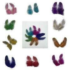 50PCS Dyeing Guinea Hen Feather Chicken Feathers Wedding Party Decorations Lot