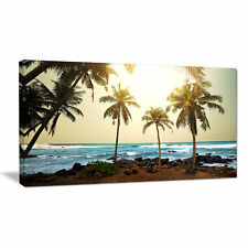 'Rocky Tropical Beach with Palms' Photographic Print on Wrapped Canvas