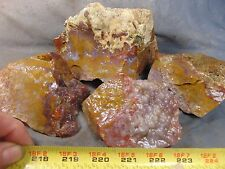 mexican cathedral agate pieces 5.64 lbs