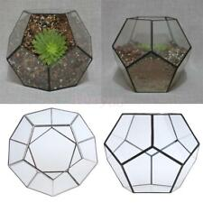 Pentagon Glass Geometric Terrarium Air Plants Box Pot Jewelry Candle Holder Gift