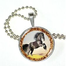 """Horse Play Black Beauty on Crystal Pendant w/ 24"""" Matchng Ball Chain"""