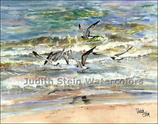 "BEACH BIRDS ""Superior Seagull"" Watercolor Painting Art Print Signed Judith Stein"
