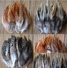 100pcs natural stripe pheasant feathers 4-6inch/6-8inch choose