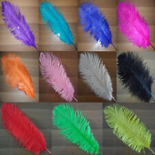 20 50 100pcs Wholesale Dyeing Natural OSTRICH FEATHERS 16-24inch Color Selection