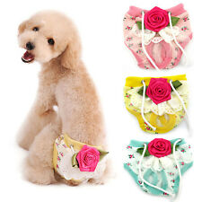 Hot Flower Pet Dog Female Puppy Sanitary Panty Pant Lace Shorts Diaper Underwear