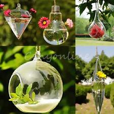 Hanging Glass Plant Flower Vase Hydroponic Container Pot Wedding Home Wall Decor