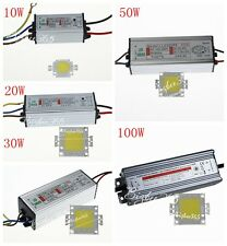 10W/20W/30W/50W/100W IP65 Power LED Driver Supply Cool Warm White LED Chip Lamp