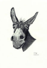 DONKEY Ltd Edition art drawing prints in 2 sizes A4/A3 & card available