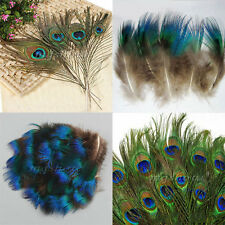 """10/50Pcs Craft Peacock Plumage Feathers DIY Wedding Party Bouquet  10-12""""  1""""-3"""""""
