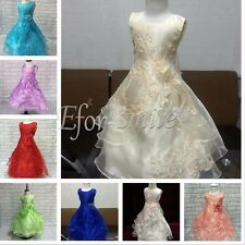 Flower Girl Dress Princess Vintage Special Occasion Birthday Party Wedding Gown