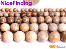 Natural Chrysanthemum Coral Fossil Cabochon Stone Beads Jewelry Making 4mm-14mm