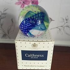 Collectible Caithness Glass Paperweight 2005 Weaver Boxed Helen Macdonald