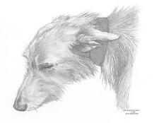 LURCHER (1) dog Ltd Edition art drawing prints 2 sizes A4/A3 &  Card available